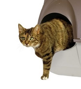 2Maison de toilette chat LITTER BOX