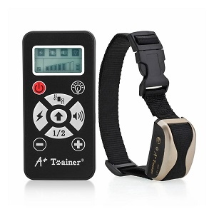 5-a-trainer-a161
